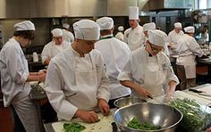 Culinary Camp 2012 | National Center for Hospitality Studies | Sullivan University