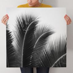 """""""Afternoon Calm"""" - Black and white palm tree art print by Jessica Nugent"""