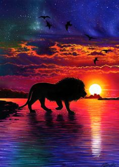 Lion Sunset Drawing by Morgan Davidson Lion Wallpaper, Animal Wallpaper, Disney Wallpaper, Lion King Pictures, Lion Images, Drawing Sunset, Lion Photography, Pinturas Disney, Lion Drawing