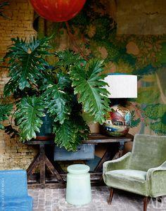 Оранжерея. В роли консоли выступает фламандский верстак 1930-х годов. Лампа тоже фламандская, она сделана в середине ХХ века и украшена пасторальными сценками. Стеклянный стул, Henry Dean. Кресло — итальянский винтаж.