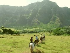 2-HOUR TOUR Ride deep into Kaʻaʻawa Valley where Jurassic Park, 50 First Dates and Lost were filmed. You'll also see forests, WWII bunkers and fantastic views of the Kualoa Mountains and Pacific Ocean. Safety precautions sometimes require trail changes. $95.00