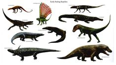 Reptiles ruling early reptilian dinosaurs wallpaper background backgrounds