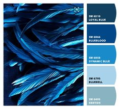 Paint colors from ColorSnap by Sherwin-Williams Color Schemes Colour Palettes, Colour Pallette, Color Combos, Bedroom Wall Colors, Room Colors, House Colors, Living Colors, Design Seeds, Paint Colors For Home