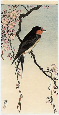 ca. 1910 - Koson, Ohara - A Barn Swallow on a Flowering Cherry Branch