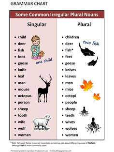 Forum | . | Fluent LandSome Common Irregular Plural Nouns | Fluent Land