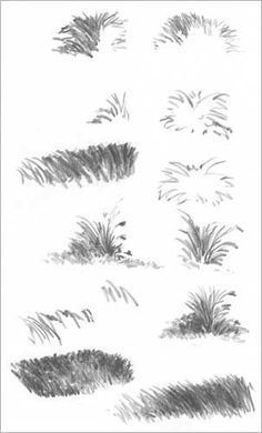 Drawing GRASS and WEEDS tutorial by Diane Wright Source by michegallagher Landscape Drawing Tutorial, Landscape Sketch, Landscape Drawings, Drawing Landscapes Pencil, Trees Drawing Tutorial, Green Landscape, Landscape Pictures, Grass Drawing, Plant Drawing