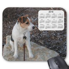 2016 Dog Calendar Jack Russell Terrier Mouse Pad
