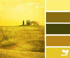 yellow tuscan gold