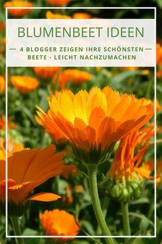 Die 71 Besten Bilder Von Blumenbeete In 2019 Flower Beds