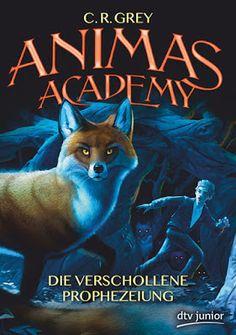 Bücher aus dem Feenbrunnen: Animas Academy – Die verschollene Prophezeiung