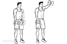 Workout as well Six pack abs besides 619DSL SEATED LEG CURL CORE BA76 also Lower Body further 56646907788156253. on cable core exercise