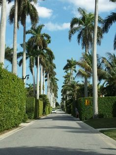 Palm Beach, a very tidy place....and actually not just for uber rich.
