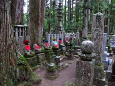 Okunoin Cemetery, Koya-san, Shikoku, Japan.  First stop in the 88 temple pilgrimage.  The statues are Jizo Bodhisattva, the guardian of children (especially those who died before their parents).  Parents make hats and bibs for the Jizo in gratitude for his protection of the children's souls.