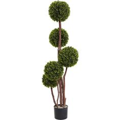 Nearly Natural 4-Ft.  Boxwood Topiary Tree X5 Uv Resistant... (€165) ❤ liked on Polyvore featuring home, outdoors, artificial silk plants, artificial plants, fake plants and faux plants