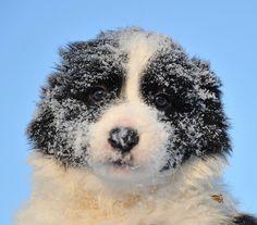 Are you ready for winter brrrbrrr http://ift.tt/2A3ke2l