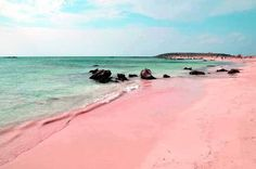 "illegaltimes: "" Pink Sandy Beach In The Island Harbour, Bahamas """