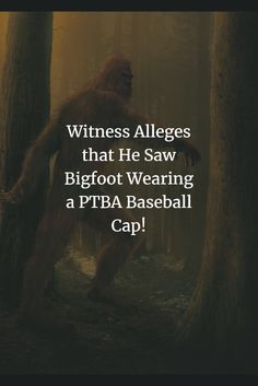 Can you believe it? Read all about it! Big News, Bigfoot, Baseball Cap, Believe, American, Reading, How To Wear, Stuff To Buy, Baseball Hat