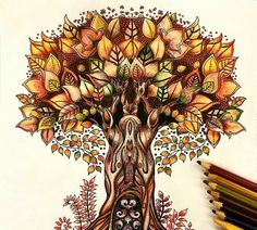 Johanna Basford   Enchanted Forest - Tree