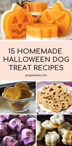 Looking for a simple way to celebrate Halloween with your dog? You can start by making them some of their very own Halloween inspired dog treats. From grain free recipes to frozen options, here's 15 homemade Halloween dog treat recipes. via Puppy Leaks Puppy Treats, Diy Dog Treats, Puppy Food, Healthy Dog Treats, Pet Food, Healthy Pets, Healthy Eating, Chien Halloween, Dog Halloween