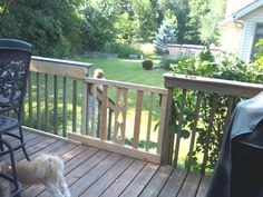 Great New Sliding Gate To Keep Dog On The Deck.