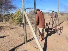 Las imágenes muestran a Valentin Gruener, un conservacionista, y a su inseparable felina Sirga, en una reserva de Botswana, país ubicado al sur de África.