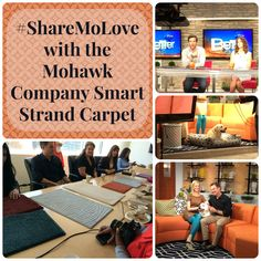 #ShareMoLove with the Mohawk Company Smart Strand Carpet #mohawkcarpet #mohawksmartstrand #mohawksmartstrandsilk #petfriendly #petfriendlycarpet #shop