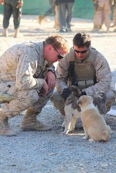 """Soldiers with their puppies Hope you're doing well.Hope you're doing well.From your friends at phoenix dog in home dog training""""k9katelynn"""" see more about Scottsdale dog training at k9katelynn.com! Pinterest with over 20,400 followers! Google plus with over 154,000 views! You tube with over 500 videos and 60,000 views!! LinkedIn over 9,200 associates! Proudly Serving the valley for 11 plus years"""