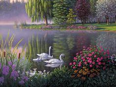 Kim Norlien - Lake & swans