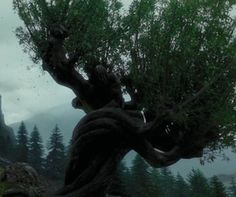 Whomping Willow - Harry Potter