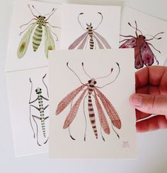 blush fly insects miniature small watercolor painting by GollyBard, $55.00
