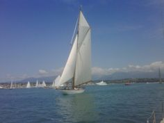 ...voile d'Antibes...