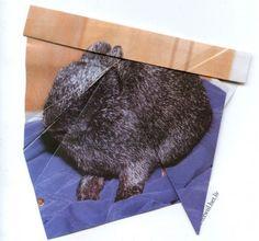 Ruth Van Beek's Hibernators