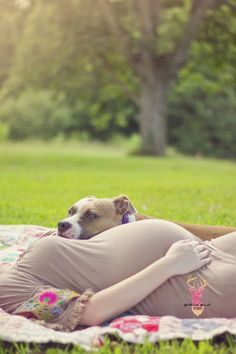 New Baby Pictures With Dog Pitbull Ideas Maternity Photography Poses, Maternity Poses, Maternity Photographer, Pet Photography, Maternity Wear, New Baby Pictures, Newborn Pictures, Maternity Pictures, Happy Pregnancy