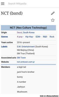 daebak! Nct U Taeil- A legit tail ; Taeyong - jack frost's bro ; Doyoung - bunny ;  jaehyun - Jaehyun ; Mark - mushroom
