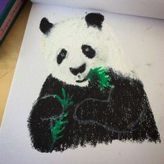 Drew a panda with my oil pastels
