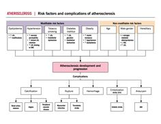 Atherosclerosis Risk factors and complications | McMaster Pathophysiology Review