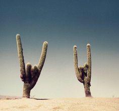 rock-on.