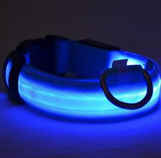 LED Glow Dog Collar - Offer