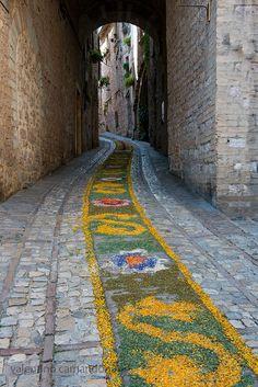 L'infiorata, Spello, Umbria, Italy