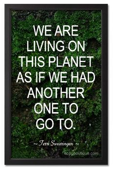 This quote says it exactly how some of us live our life not caring about our planet. It's important for me because the planet is our actual home. It's where everything is created. It should matter to society because if we don't stop littering or start recycling we affect our planet. They would have to be cutting more trees to make our papers were if we would recycle they wouldn't have as much need to cut more trees.