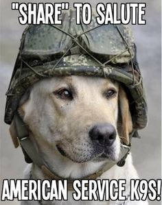Thank you to our Canine Heros ~ American Service K9s
