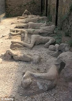 Ancient roman Bodies Italy Pompeii Volcanic. Victims in the remains of  Pompeii, destroyed in