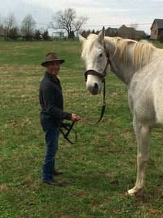 Silver Charm and his jockey Gary Stevens reunite at Old Friends Horse Fly, Horse Love, Horse Racing, American Pharoah, Sport Of Kings, Beautiful Horses, Pretty Horses, Thoroughbred Horse, Racehorse