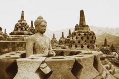 The is one of the largest built in century. pretty panels and 502 Buddha Statues, Borobudur, Temples, Worlds Largest, Pretty, Travel, Temple