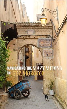 The mazy medina of Fez, Morocco