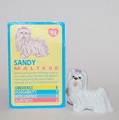 095_ Sandy looks so much like a little plastic Maltese I had, about PiMP size, called Seabreeze. I think she came out of a vending machine.