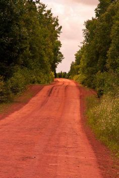 P.E.I's famous red soil.