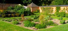 Jardins de plantes condimentaires, potager du château d'Acquigny - Normandie (A.Bouiller)