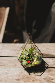 Terrarium with golden hippo. Great alternative to centerpieces plus you can re use them!