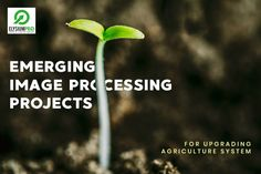Image processing is a tool for analysis of the imagery used in precise agriculture. image Processing Projects is growing with high-quality measurements Digital Image Processing, Agriculture, Reading, Projects, Blog, Log Projects, Blue Prints, Reading Books, Blogging